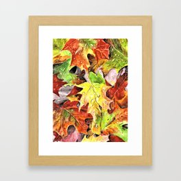 Autumn Leaves with Raindrops, Fall Art, Colorful Leaves, Anne Hockenberry Framed Art Print