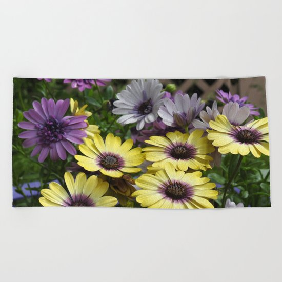 Yellow and Purple African Daisies Beach Towel