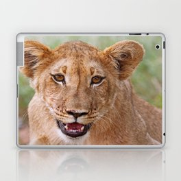 the young lion, Africa wildlife Laptop & iPad Skin