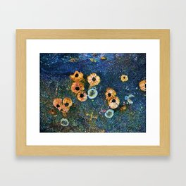 Abstract beautiful barnacles Framed Art Print