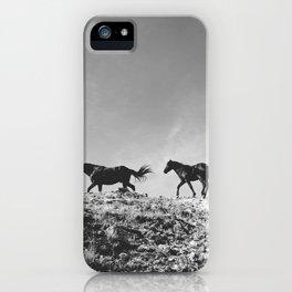 Pryor Mountain Wild Mustangs iPhone Case