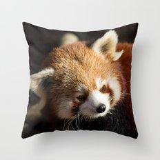 Ailurus Fulgens Throw Pillow