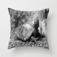 cheese Throw Pillows featuring Cheese! by Amy C Peters