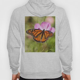 Monarch Butterfly on Pink Cosmos Hoody