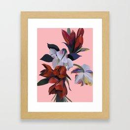 Freedom and elegance Framed Art Print