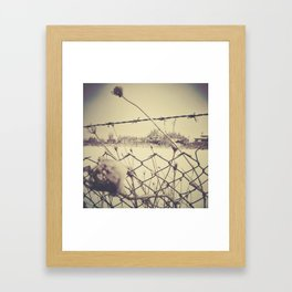 Roma under snow Framed Art Print