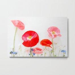 Poppies Wildflowers Background Metal Print