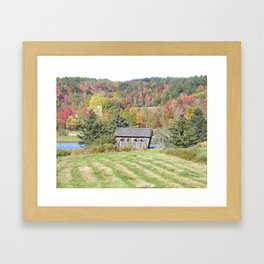Bridging the Pines Framed Art Print