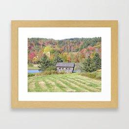 Bridging the Pines Framed Art Print