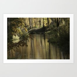 Clearlake Park Willamette River Art Print
