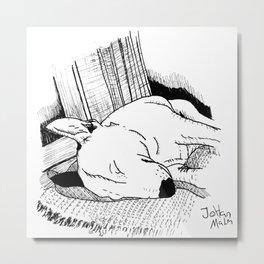 Bullterrier sleeping in the sun Metal Print