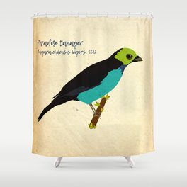 Paradise tanager bird illustration designed for bird and nature lovers Shower Curtain