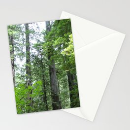 California forest Stationery Cards