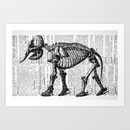 Elephant Skeleton Art Print