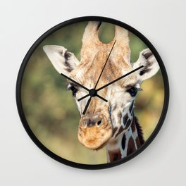 Giraffe outside in nature during the day. Wall Clock