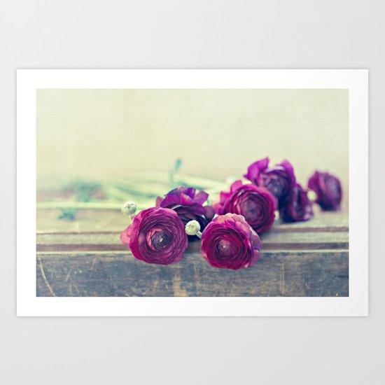 Like Royalty (Purple Ranunculus)  Art Print
