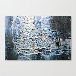Oil Slick Canvas Print