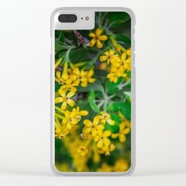 Yellow Blossoms 5 Clear iPhone Case