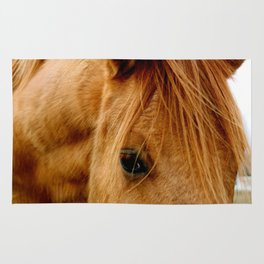 """a horse of a different color"" Rug"