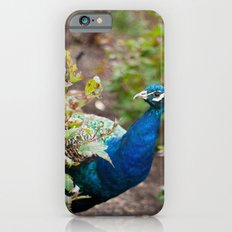 You Looking at Me? iPhone 6s Slim Case