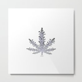 Cannabis Snow Flake Metal Print