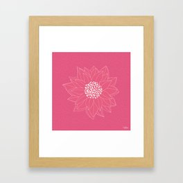 Pink Chrysanthemum Framed Art Print
