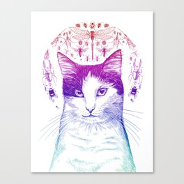 Of cats and insects Canvas Print