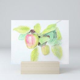 Winter Apples on the Branch Mini Art Print