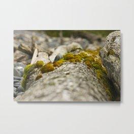 Beachwood Photography Print Metal Print