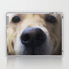 Golden Nose Laptop & iPad Skin