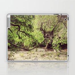 Greenbelt Riverbed Laptop & iPad Skin