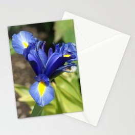 Blue Iris Flower - Blue, Yellow, Green Stationery Cards