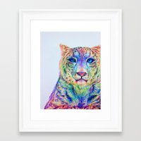 snow leopard Framed Art Prints featuring Snow Leopard by Disha Trivedi