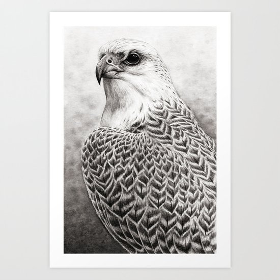 The Gyrfalcon Art Print