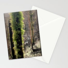 Re-Growth Stationery Cards