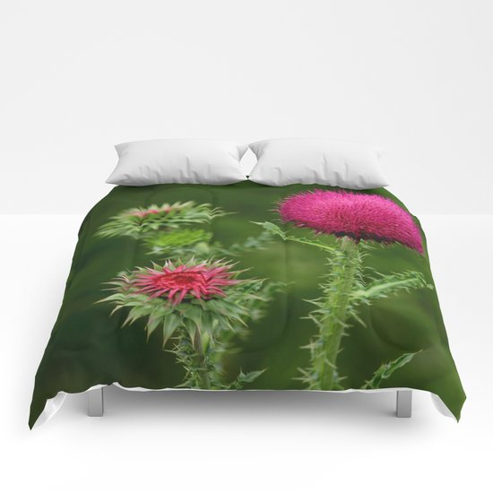 Prickly beauty Comforters