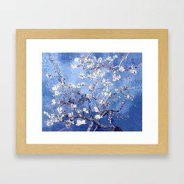 Vincent Van Gogh Almond BlossomS Blue Framed Art Print