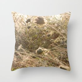 Washed in the gentle dawn Throw Pillow