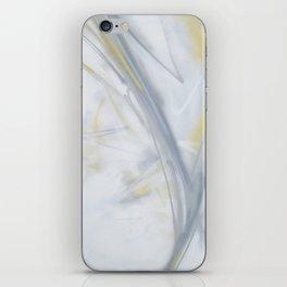 Dix iPhone Skin