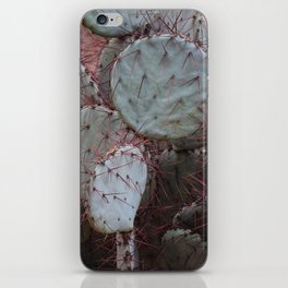 Cactus with red thorns iPhone Skin