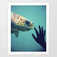 Turtle meeting human Art Print