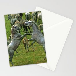 Fighting horses Stationery Cards
