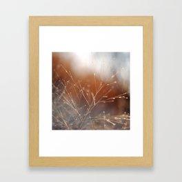 Nature Sparkles Framed Art Print