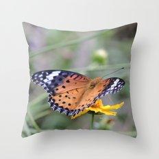 Indian Fritillary in Hangzhou Throw Pillow