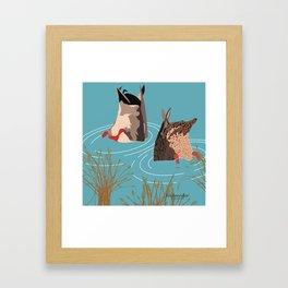Ducks taking a bath Framed Art Print