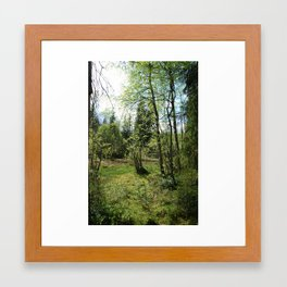 Hidden forest Framed Art Print