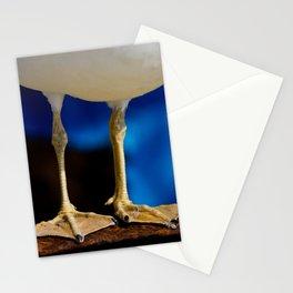 Flipper Stationery Cards