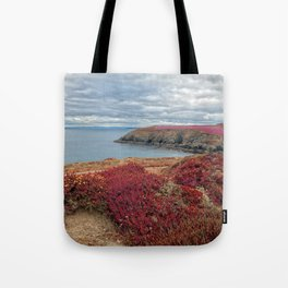 Irish Pomegranate Coast Tote Bag