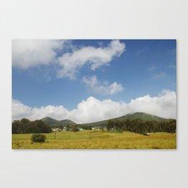 Waimea. Canvas Print