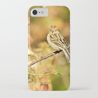 sparrow iPhone & iPod Cases featuring Sparrow by Shelby Babbert Photography